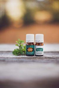Aceite esencial menta Plus+