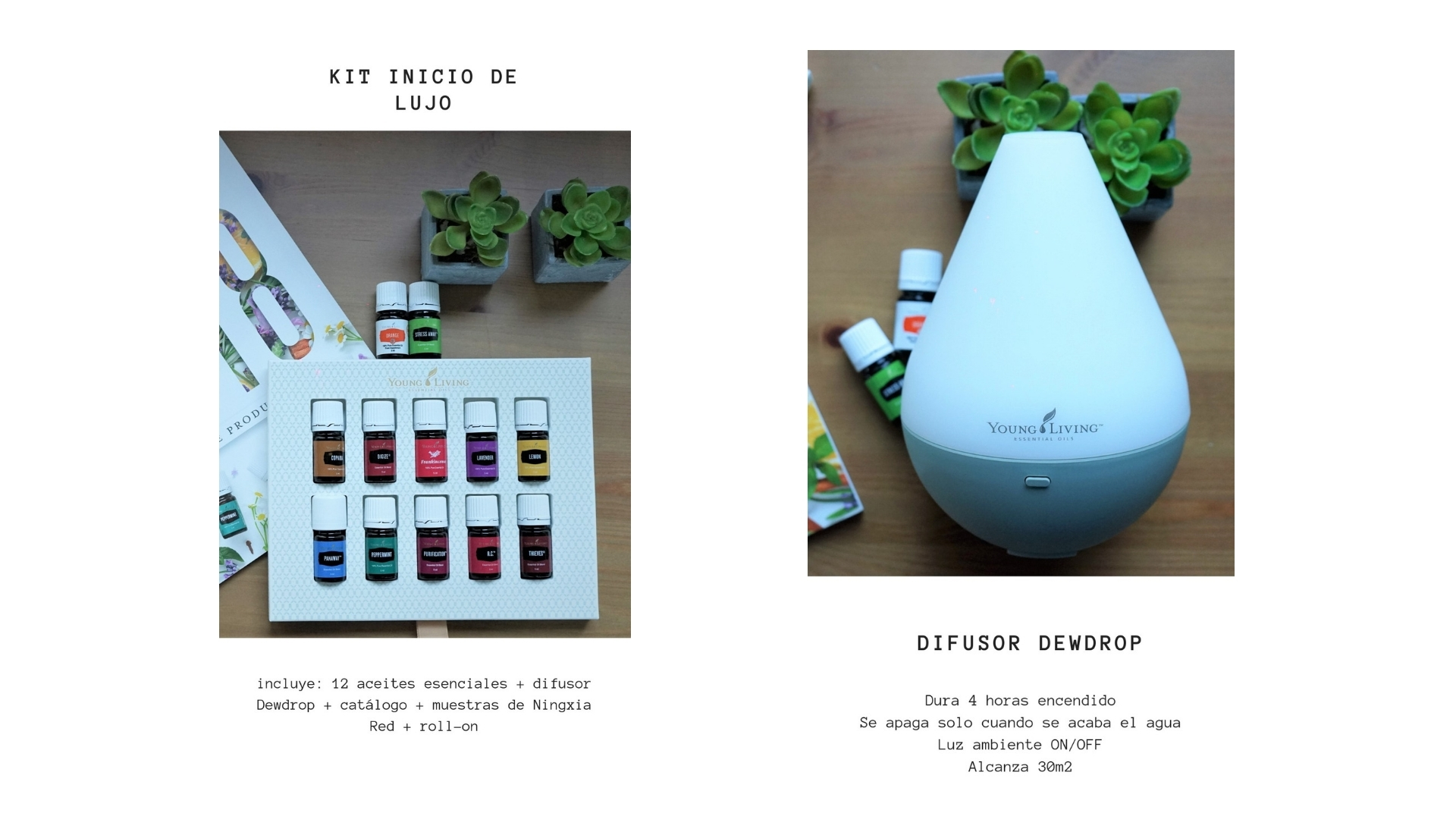 Kit de inicio de Young Living
